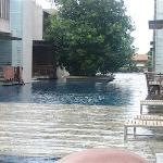 Pool and decks