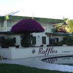 Raffles Bouganvillea