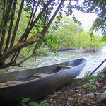 Bocas del Toro Province