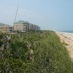 vue des condos et de la plage