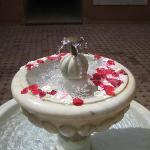 Rose petals in the hotel fountain