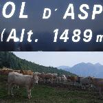Col d'Aspin