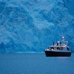 Cruceros MarPatag face au glacier Spegazzini