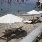 umbrellas by the shore