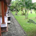 Blick aus Hütte, Weg und Garten