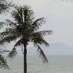 la vue sur mer