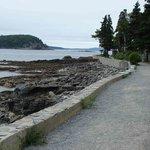 Shore Path Bild