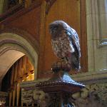 The Falconer's owl in the entry hall during breakfast