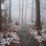 Snowy walkways in the winter!