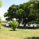 Bambea Grounds