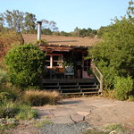 Sara's Cottage