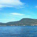 Foto di Fintry Estate & Provincial Park