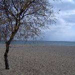 Agrari Beach 1