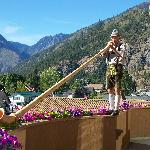Alpine horn player