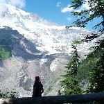 View of Mt Rainier Glacier
