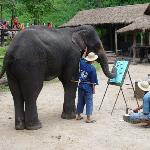 excellent elephent painting
