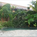 the oasis of a pool - I can almost hear the trickling waterfall!
