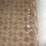 Paint stains on carpet
