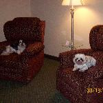 This is the living room w/2 recliners!