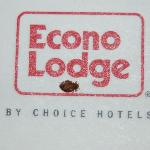 Bedbugs at the Econo Lodge