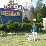 Balsams Motel in St. Ignace