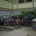 bikes available for use