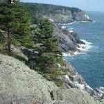 Cliffs at Whitehead