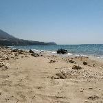 Local beach (2)