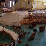 Circus Exhibit