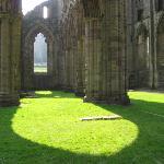 in Tintern Abbey