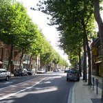 Tree lined street of Calais