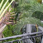 Foto de Palm Springs Lodge & City Resort