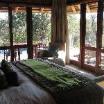 Safari - view from bedroom
