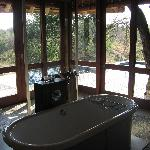 Safari - view from Bathroom