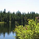 Alice Lake Scenery