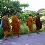 monk in the morning