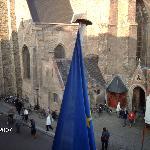 Vista sulla chiesa del Salvatore