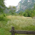 walking trails, in mountains..fields...beautiful.