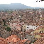 the rooftops of Lucca