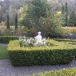 Portion of garden