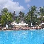 Padma's pool
