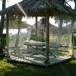 Massage Tent