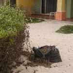 i rifiuti sparsi ovunque capita nel villaggio