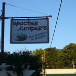 Brother Juniper's