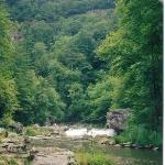 Foto de Linville Gorge Wilderness Area