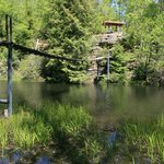 Swinging Bridge- Pickett State Park