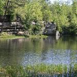 Pickett State Park and Forest Foto