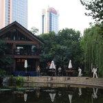 Tai-chi en el laguito del parque Jing An