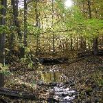 Ranch Hiking Trail