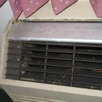 The AC - covered in grime and mold and even some mini mushroom like things